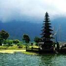 爪哇岛攻略图片