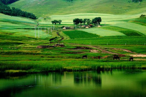 呼伦贝尔旅游内蒙古海拉尔满洲里阿尔山漠河大草原旅游包车自由行
