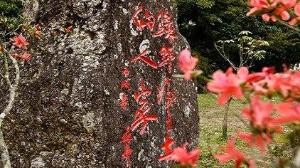 茂名高州仙人洞风景区门票