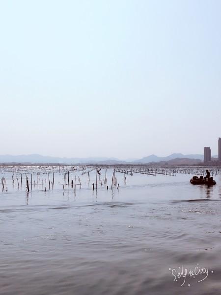 漳州双鱼岛--双鱼岛游记--蚂蜂窝