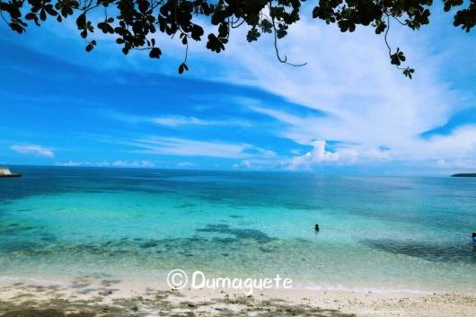 杜马盖地 锡基霍尔岛 牛奶湖树藤跳水 一日游(神秘巫医岛+山顶餐厅