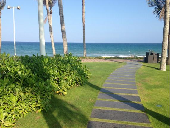 清晨在海边踏浪,迎风奔跑,看海上日出,从微光到光芒万丈!