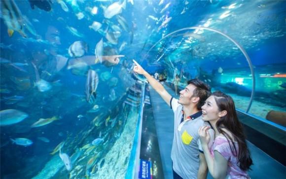 武汉海昌极地海洋世界成人电子票