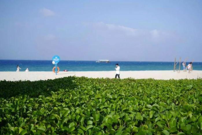 去一趟三亚人均多少钱_三亚风景图片