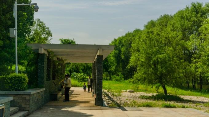 2017 西安# 闲游灞桥生态湿地公园(上)