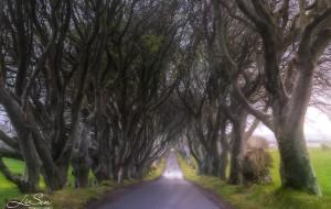 【爱尔兰图片】【爱尔兰】 在冰与火之歌中穿行 用最省钱的玩法体验爱尔兰的狂野