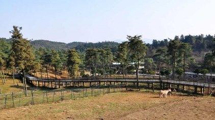 贵州森林野生动物园位于贵阳市修文县扎佐镇贵州省扎佐林场冷水沟分场