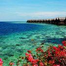卡帕莱岛攻略图片