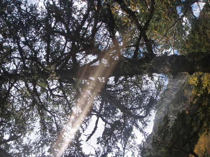 康定木格措图片 - 蚂蜂窝