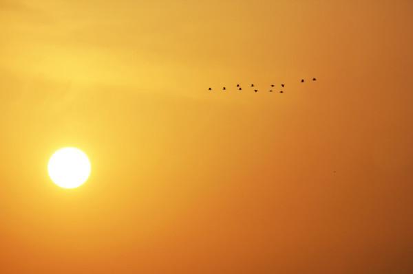 怪不得主耶稣喜爱在加利利海传道呢,清晨的金色阳光好像激活了湖边的