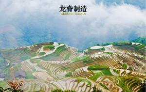 【龙脊梯田图片】【龙脊制造】——打个灰的去桂林三日行摄记
