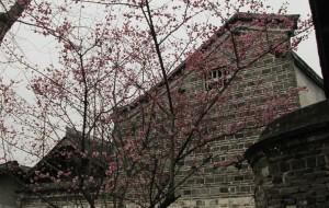 【安仁古镇图片】人间三月初•造访安仁