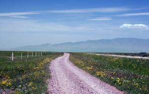 【山丹图片】回忆里的高原(10)山丹军马场,寻找回到纯美的世界
