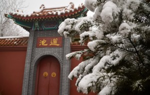 【石家庄图片】瑞雪兆丰年---2015年春节雪中龙泉寺