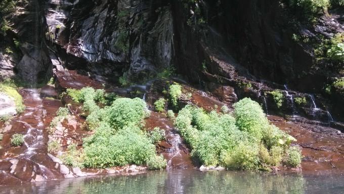 望天鹅风景区以奇石怪岩多,泉水瀑布多而著称,特别是瀑布多而奇特