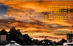 【纽伦堡图片】心中不灭的印记---纽伦堡