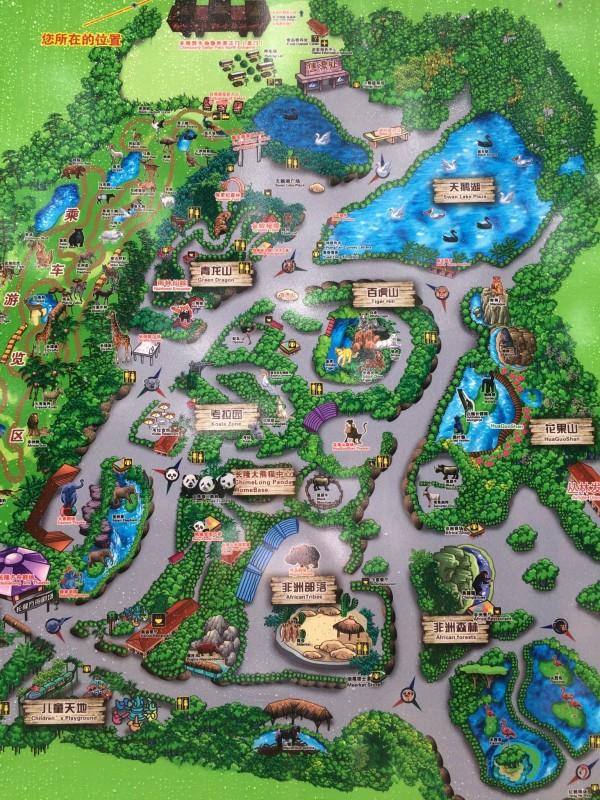 5月初带顺宝2大1小广州长隆之旅:大马戏 野生动物园 水上乐园