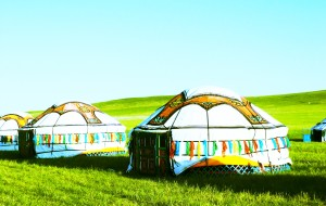 【锡林浩特图片】#消夏计划#乌拉盖&我心中的绿色天堂