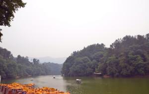 【蒲江图片】游湖朝阳,绿水映青葱