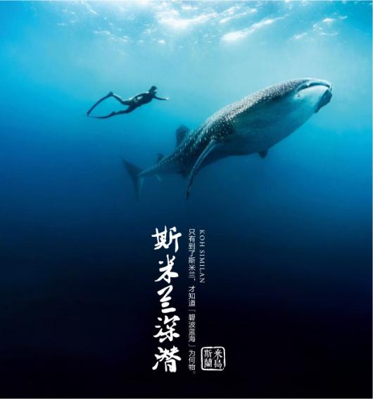 泰国普吉岛斯米兰群岛深潜专拍(有证/无证深潜 豪华游轮 中文教学)需