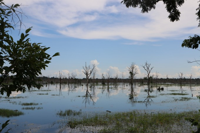 往龙蟠水池赶的时候,天开始慢慢放晴,柬埔寨此时已逐渐进入旱季,雨能