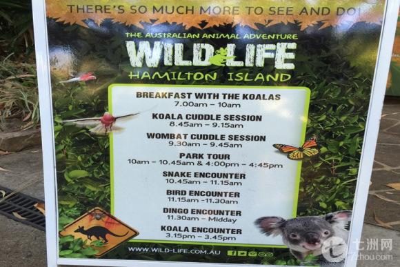 —动物园活动时间表(可作参考)