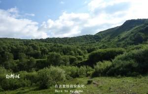 【丰宁坝上图片】丰宁坝上草原——孤独的游者