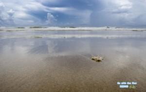 【陵水图片】就懒在这里,海南清水湾的兜兜转转~~~(深度游,超详细)