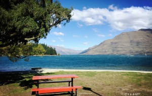 【凯库拉图片】♥抛开烦恼&尽情享受♥ 2016.3新西兰南岛6人疯狂之旅嗨翻天! 首刷完成!