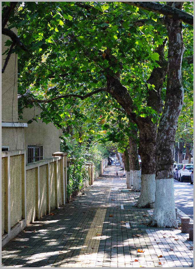 青岛八大关街道