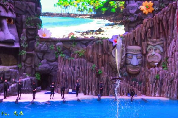 广东省旅游 广州旅游攻略 珠海长隆海洋王国烟花的圣夜   5d城堡影院
