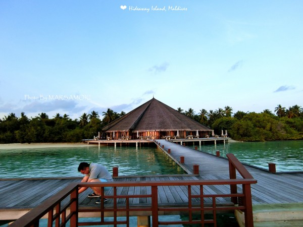 马尔代夫 游记  夕阳,在拖尾沙滩,神仙珊瑚岛的标志歪脖子椰子树,和梦