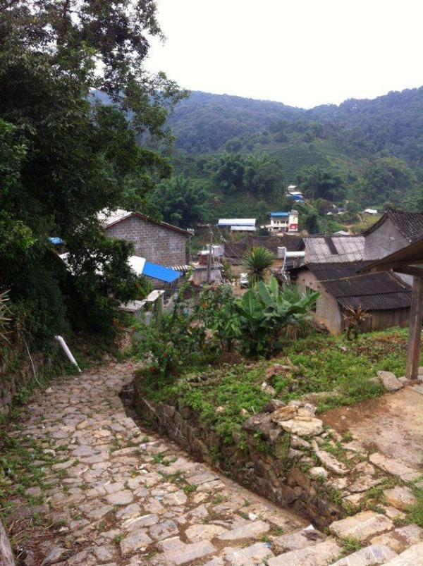 缅甸小勐拉皇家国际no818com之旅行磨憨岸!