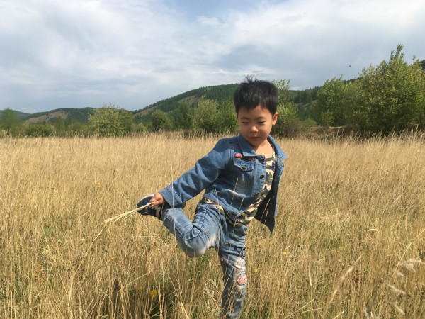 呼伦贝尔大草原_让我飞上天_和太阳肩并肩_只为梦中的草原