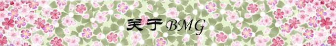 关于BMG