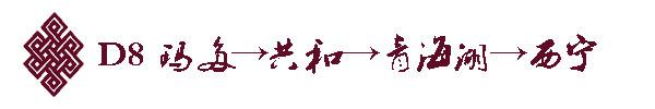 D8 玛多→共和→青海湖→西宁