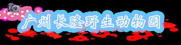 广州长隆野生动物园